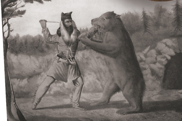Bear-fight