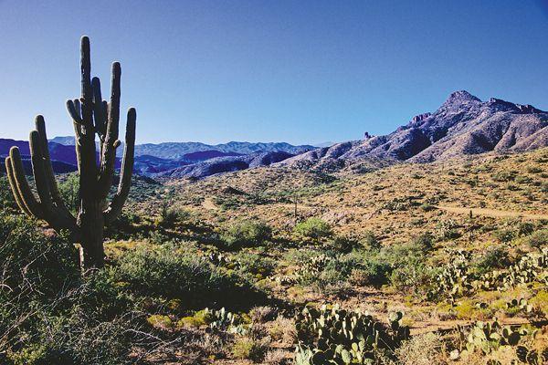 rugged-superstition-terrain