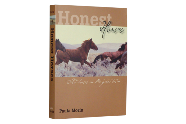 honest-horses