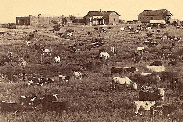 empire_ranch