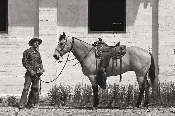 Monk Maxwell shows us the three phases of California vaquero-style horse training.
