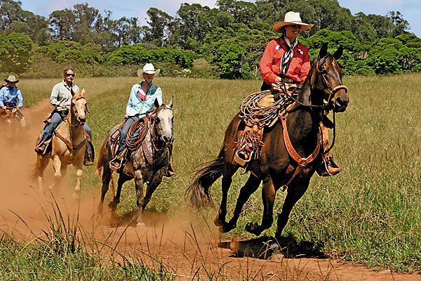Riding on the trails of the Baldwin family at Piiholo Ranch.
