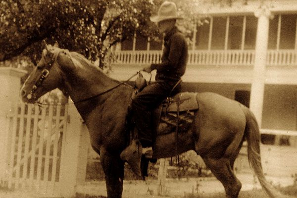 trail_rider_quarter-horse_chisholm-trail_steel-dust