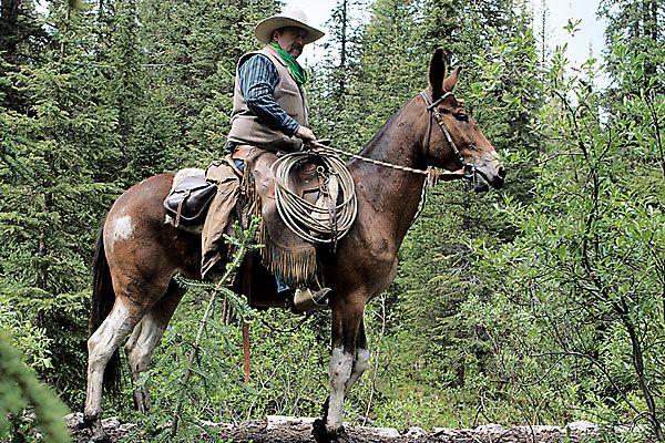 barry-ferguson_banff-national-park_canada