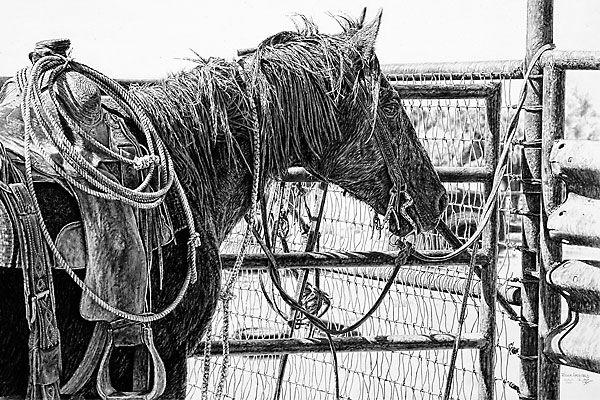 robert_archibald_western-artist
