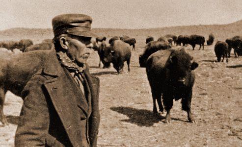 sam_burrow_manager-charles_goodnight-ranch_buffalo.