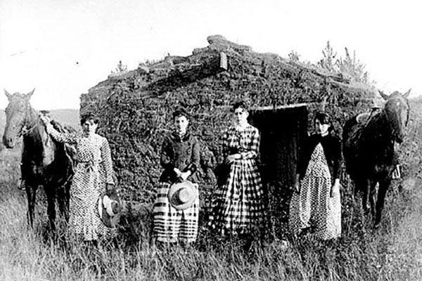 homesteading-blog
