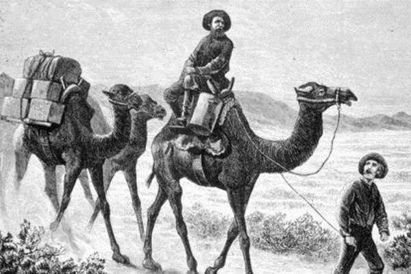 camel-corps-blog