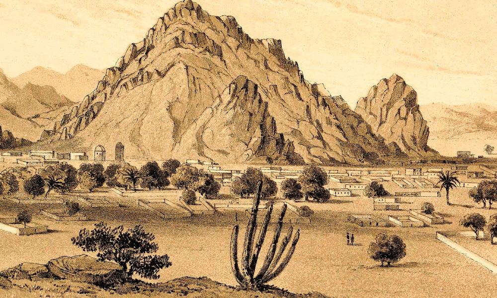 Illustration of Desert Landscape