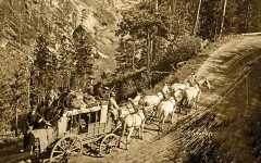 Photograph of Deadwood Stagecoach