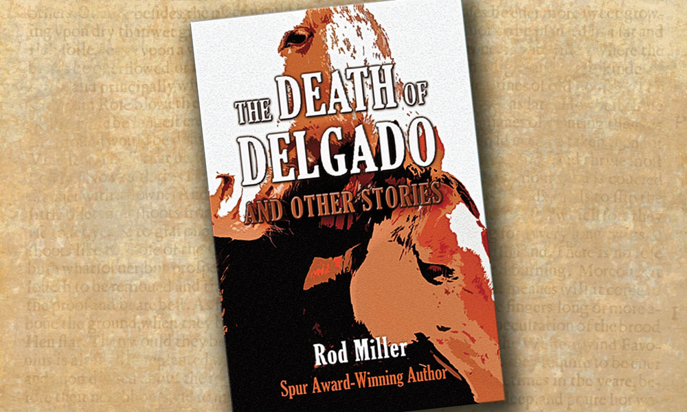 """The Death of Delgado"" book cover"