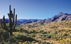 lost dutchman superstitions true west