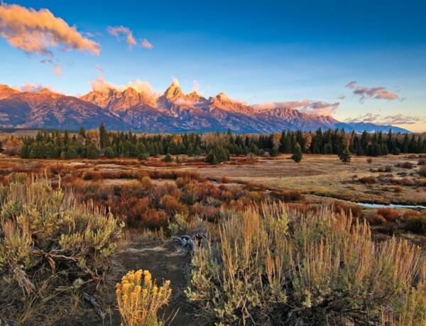 Grand Teton Chad coppess True west