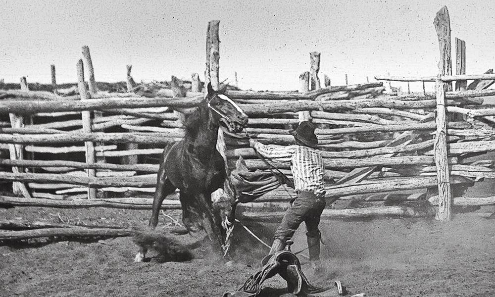 Bronco Saddle Blanket True West