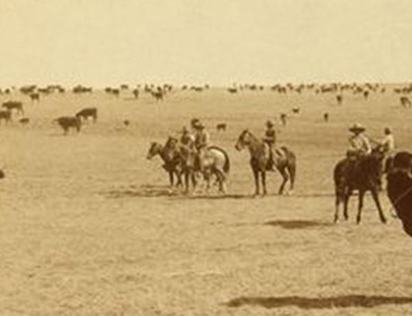 cowboys true west