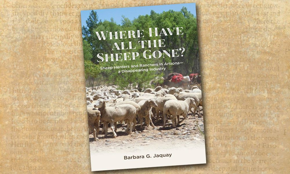 Sheep ranching Where Have All The Sheep Gone True West