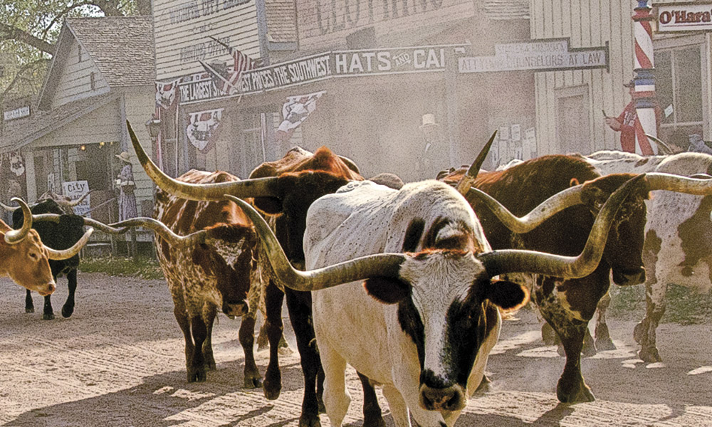 Cattle Towns True West Magazine Wichita