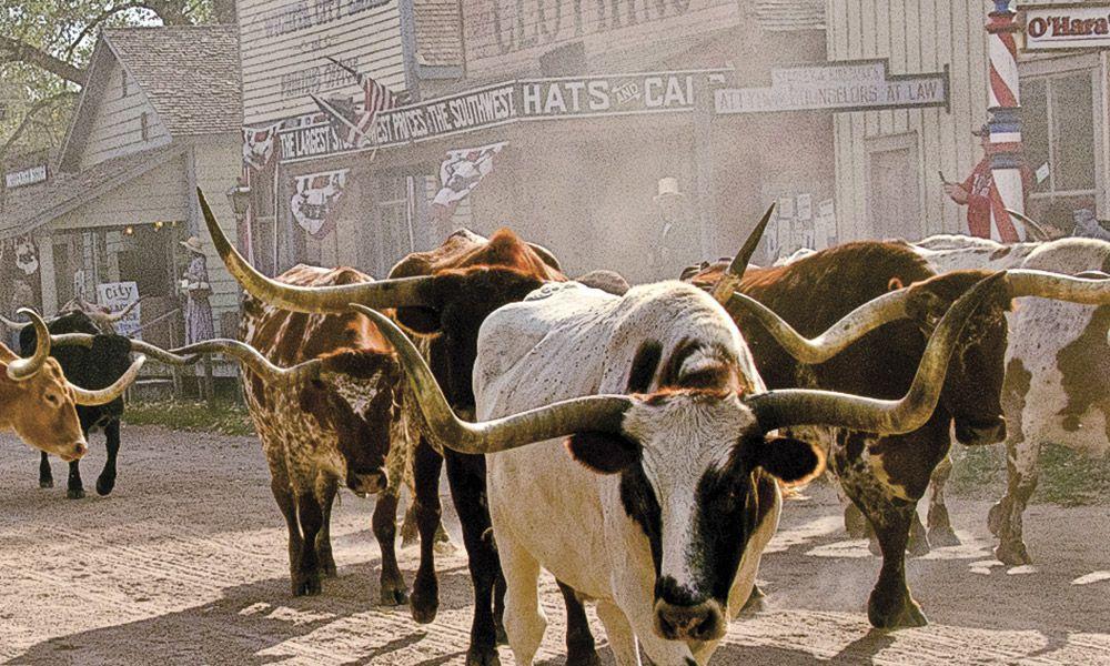 Cattle Towns True West Magazine Wichita