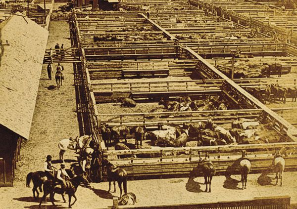 Cattle Towns True West Magazine Kansas City