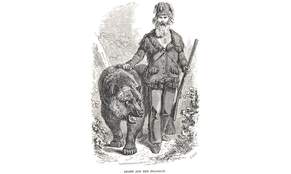 Grizzly Adams Illustration