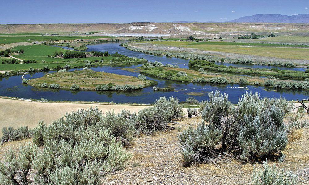 Three Island Crossing Oregon Trail True West
