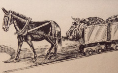 Del Potter's Mule-Powered Railroad