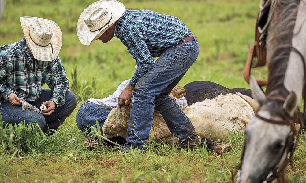 Reality Cowboy Stars True West Magazine