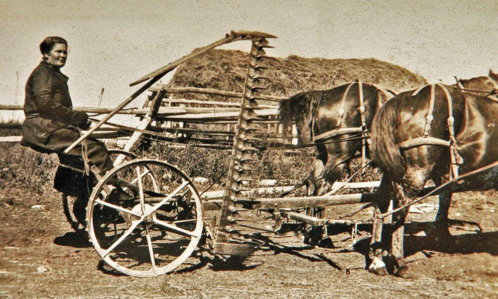 Elinore Pruitt True West Magazine Horse Drawn Carriage
