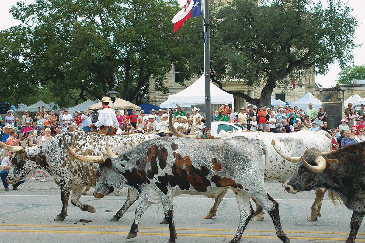 experience bandera texas cattle drive true west magazine