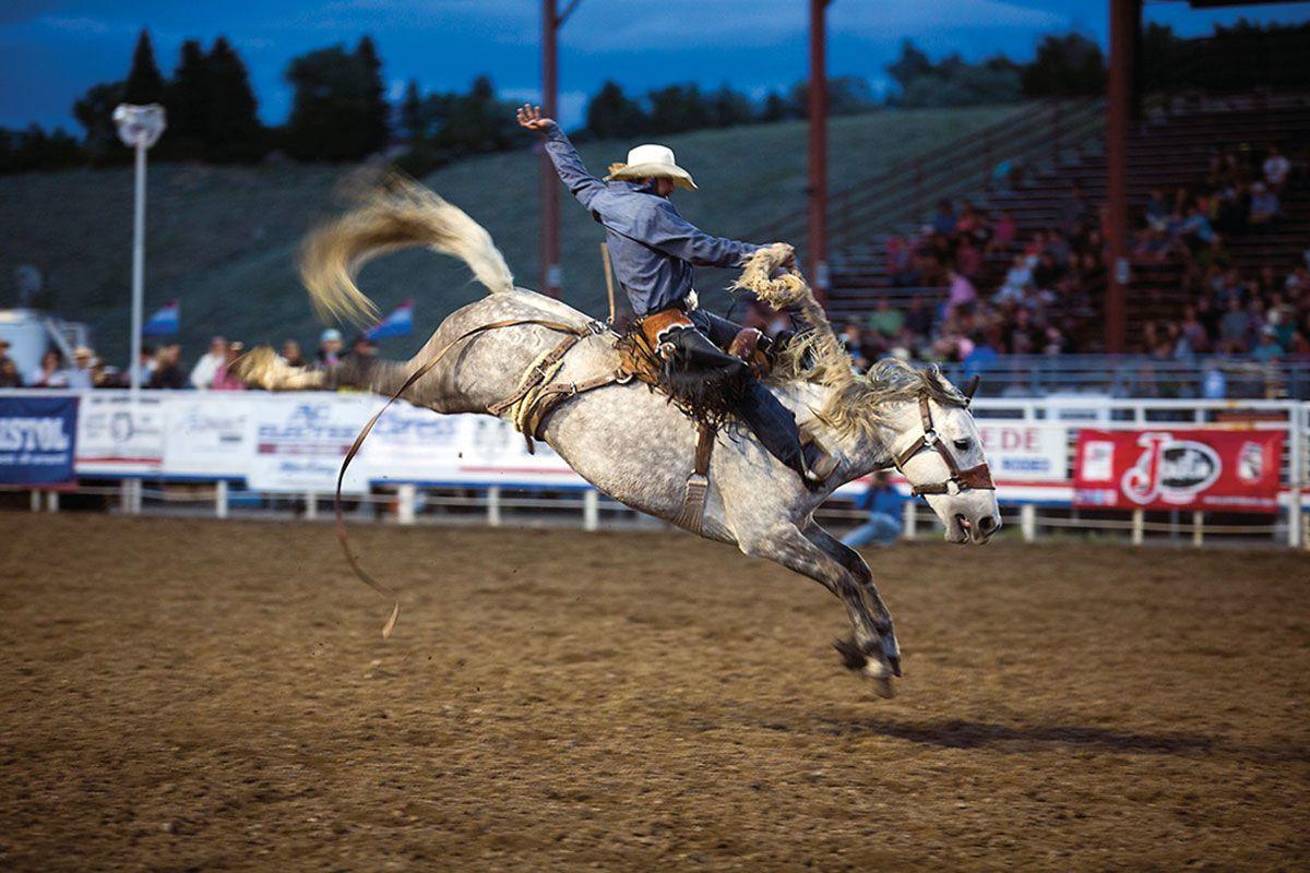 bucking horse cody wyoming true west magazine