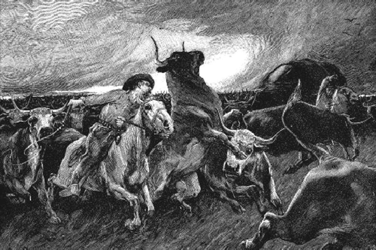 cattle stampede illustration black and white true west magazine