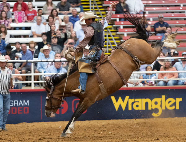Beat the stampede to Mesquite, the official Rodeo Capital of Texas