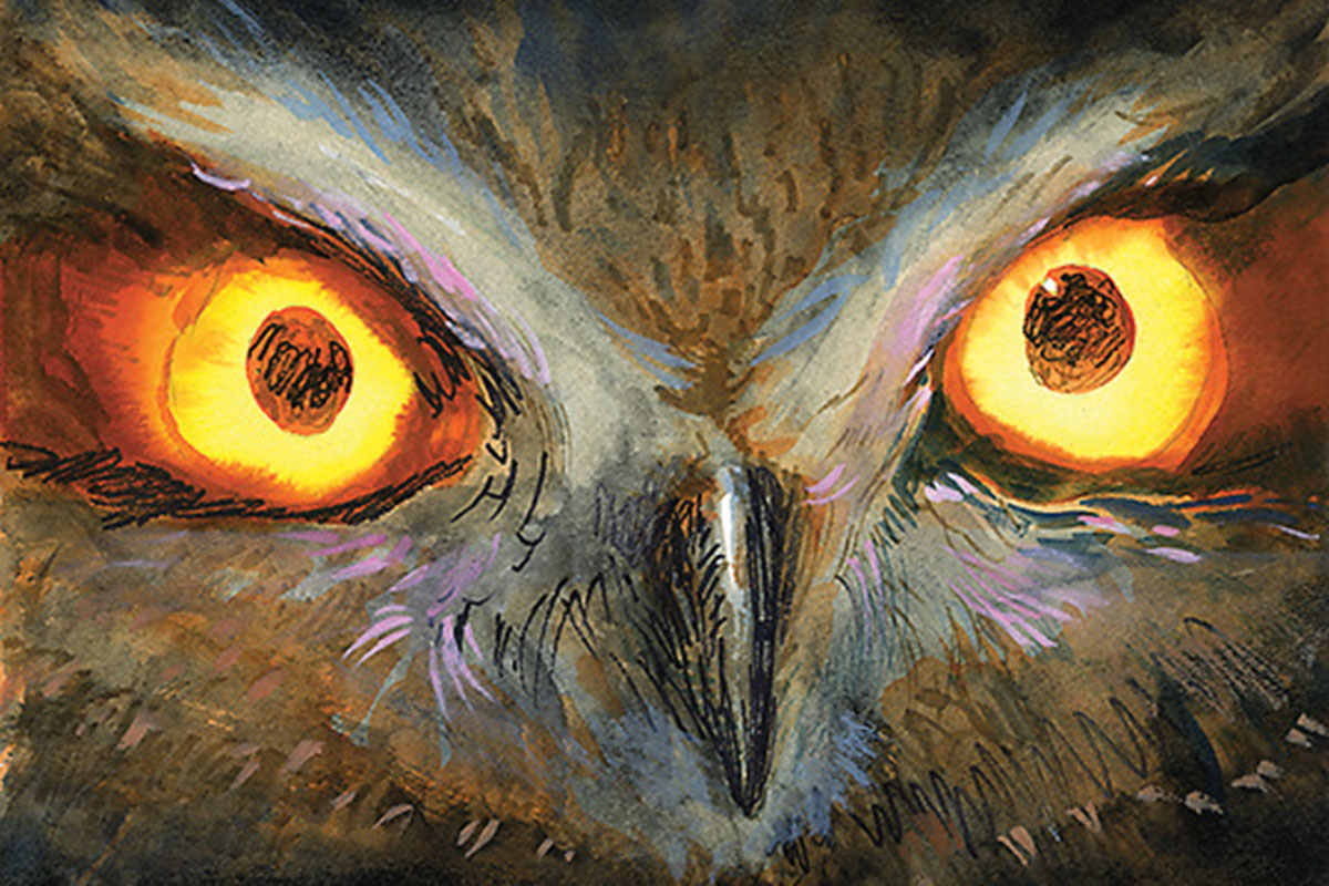 owl true west magazine