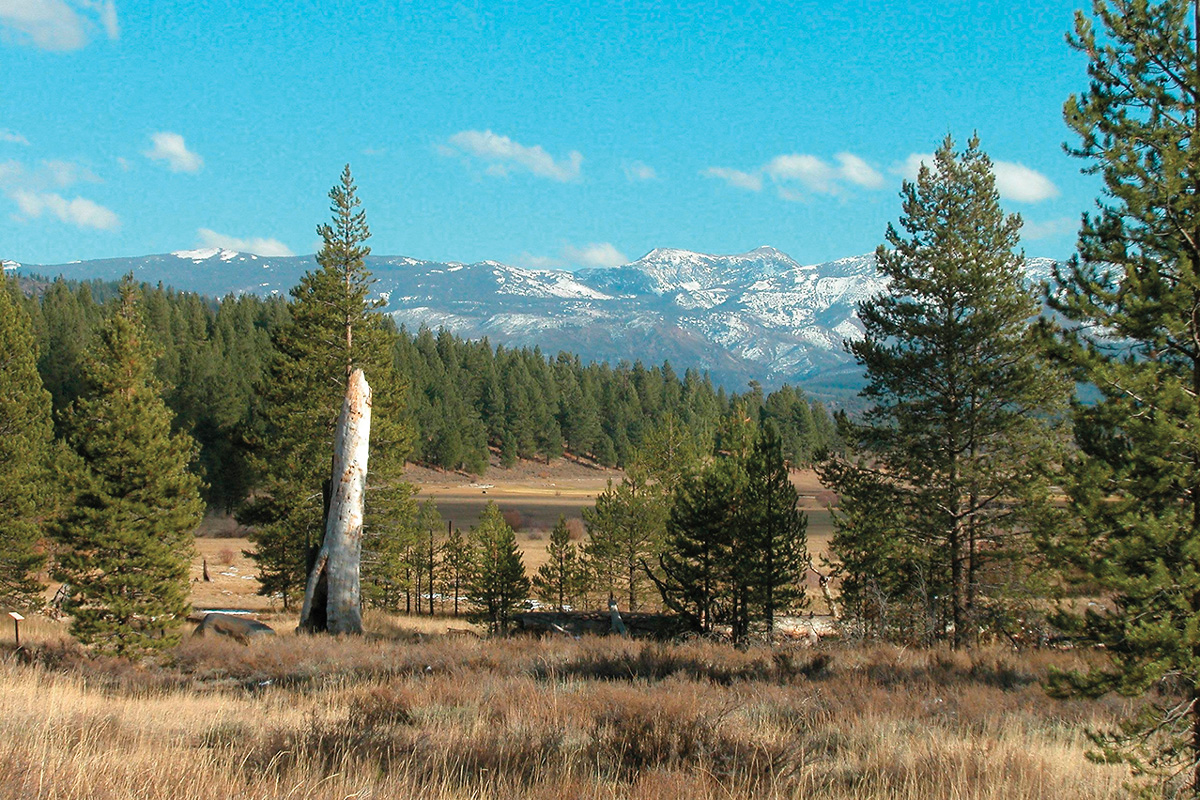 sierra nevada donner party true west magazine